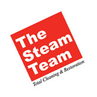 SponsorLogo_TheSteamTeam